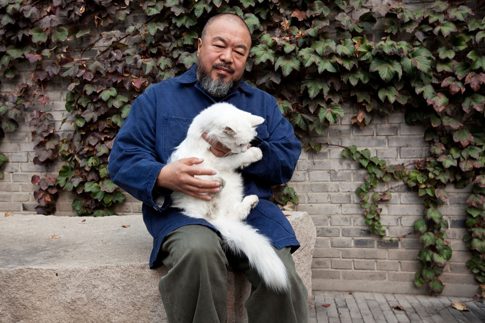 Aiweiwei poses for a portrait with one of his cats in his studio compound | Image by Matthew Niederhauser (fair use)