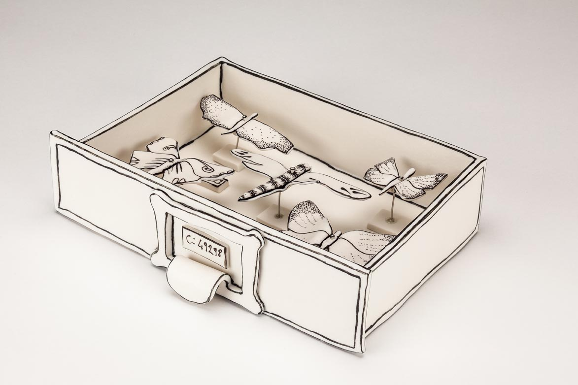 Katharine Morling: Butterfly drawers | Image from the artist's website (fair use)
