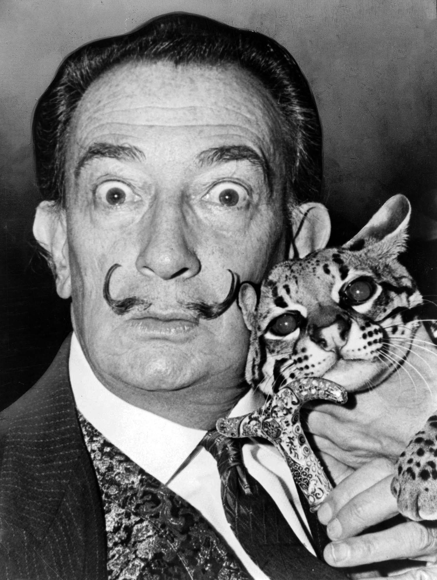 Mr Salvador Dalí with his ocelot Babou at The St Regis, New York, 1965 | Photograph by Mr Roger Higgins/Library of Congress Prints and Photographs Division, Washington DC (fair use)