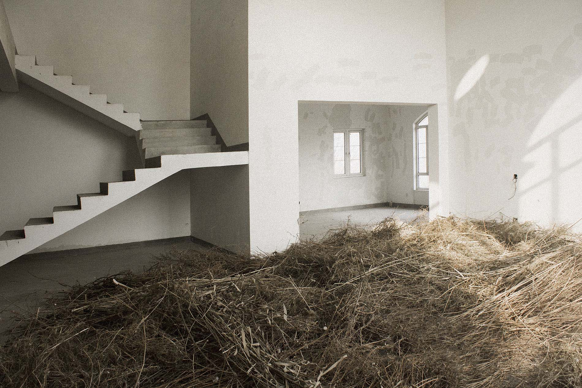 "Andi Schmied, ""Grass House"", 2014 